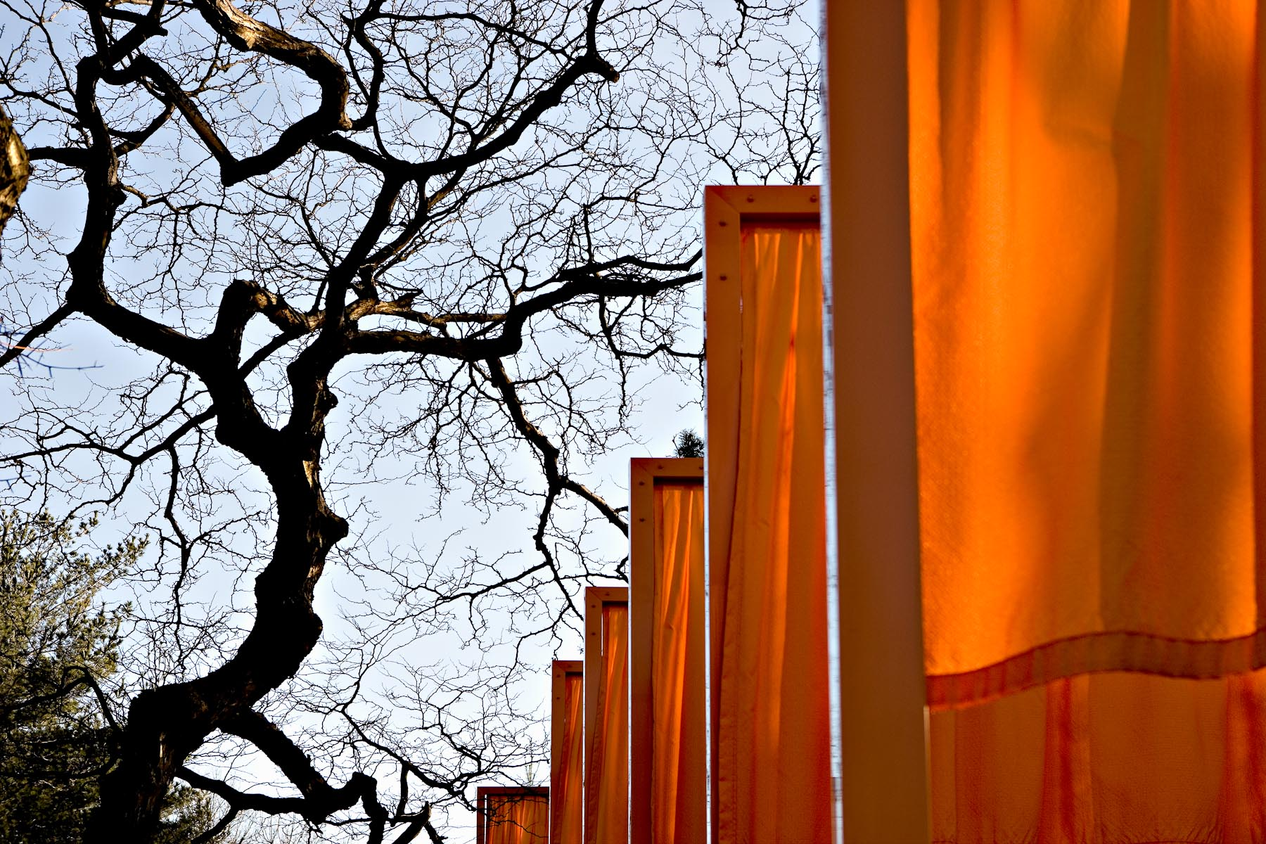 Cristo Flags, Central Park NYC